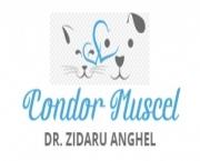 CONDOR MUSCEL - DR. ZIDARU ANGHEL