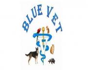 BLUE VET ONE