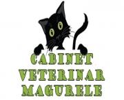 Cabinet Veterinar Magurele