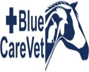 Cabinet veterinar CHICCO VET